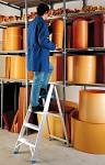 Professional Al ladder 6017