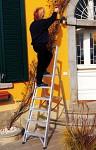 Professional Al ladder with nylon platform 6040T